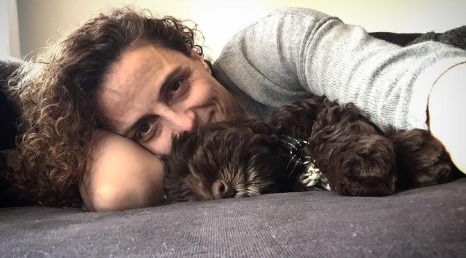 Hunder og eiere som likner på hverandre